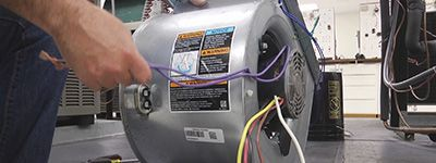 Finding a Replacement Motor