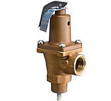 Automatic Reseating Temperature and Pressure Relief Valves